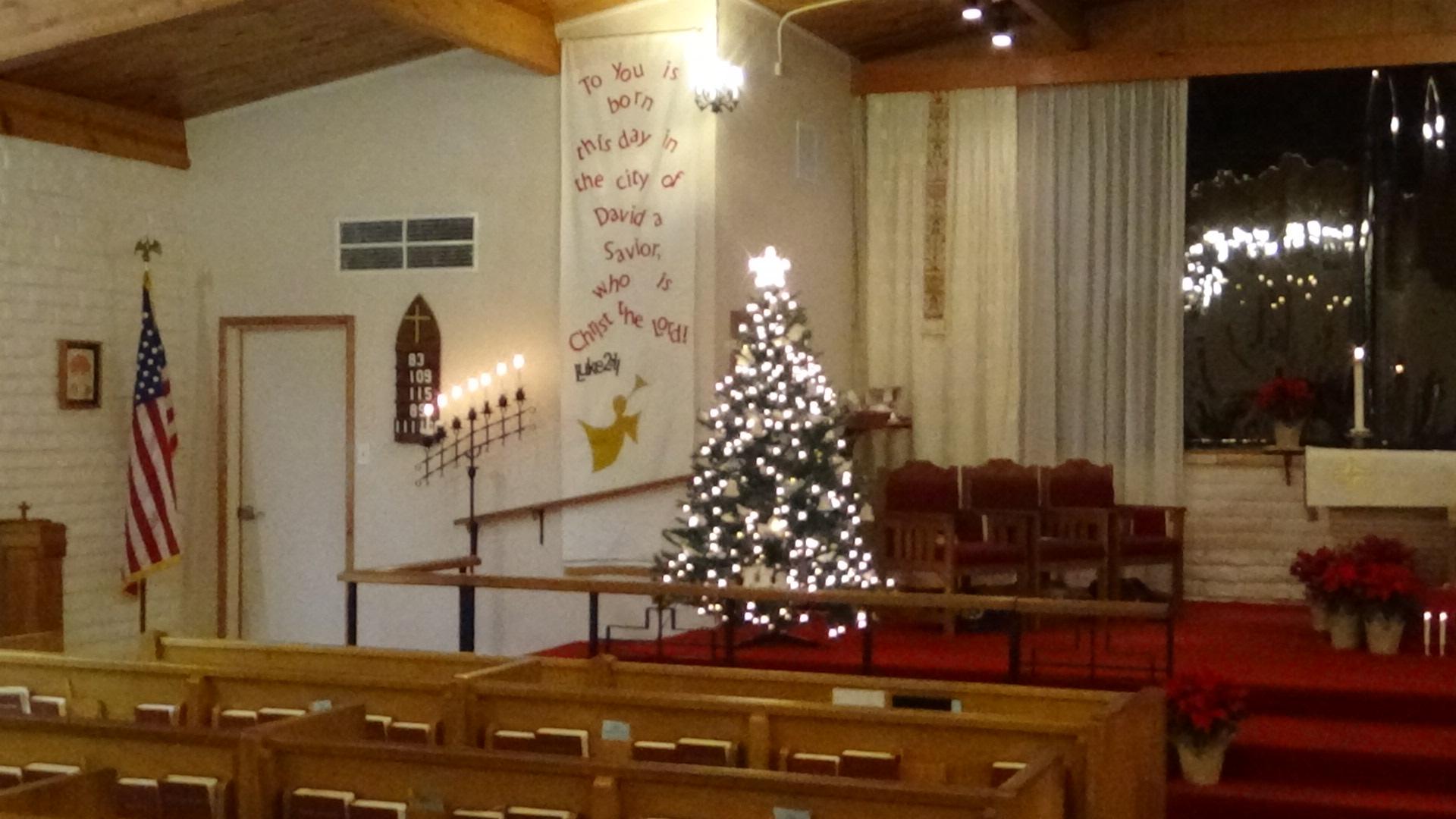Christmas Tree 2016